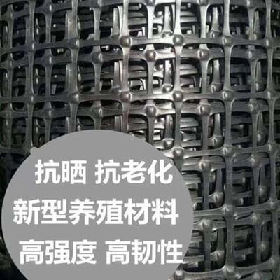 黑色方形养鸡养鸭塑料围栏网圈玉米圈地塑料网厂家