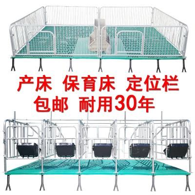 热镀锌围栏母猪产床双体产床连体分娩床猪产仔床