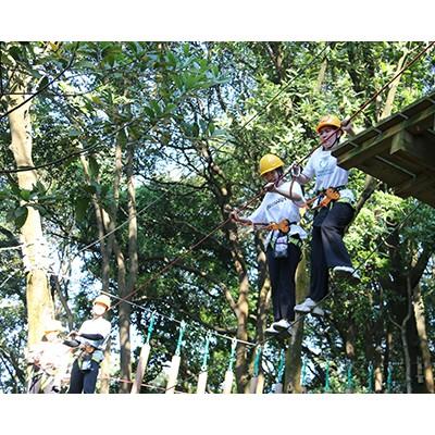 丛林穿越为什么这么受欢迎,广东中力旅游开发公司